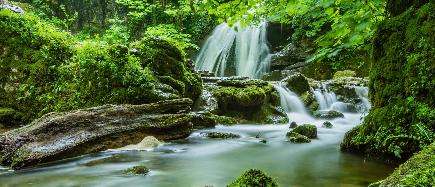 Natuur en het behoud hiervan